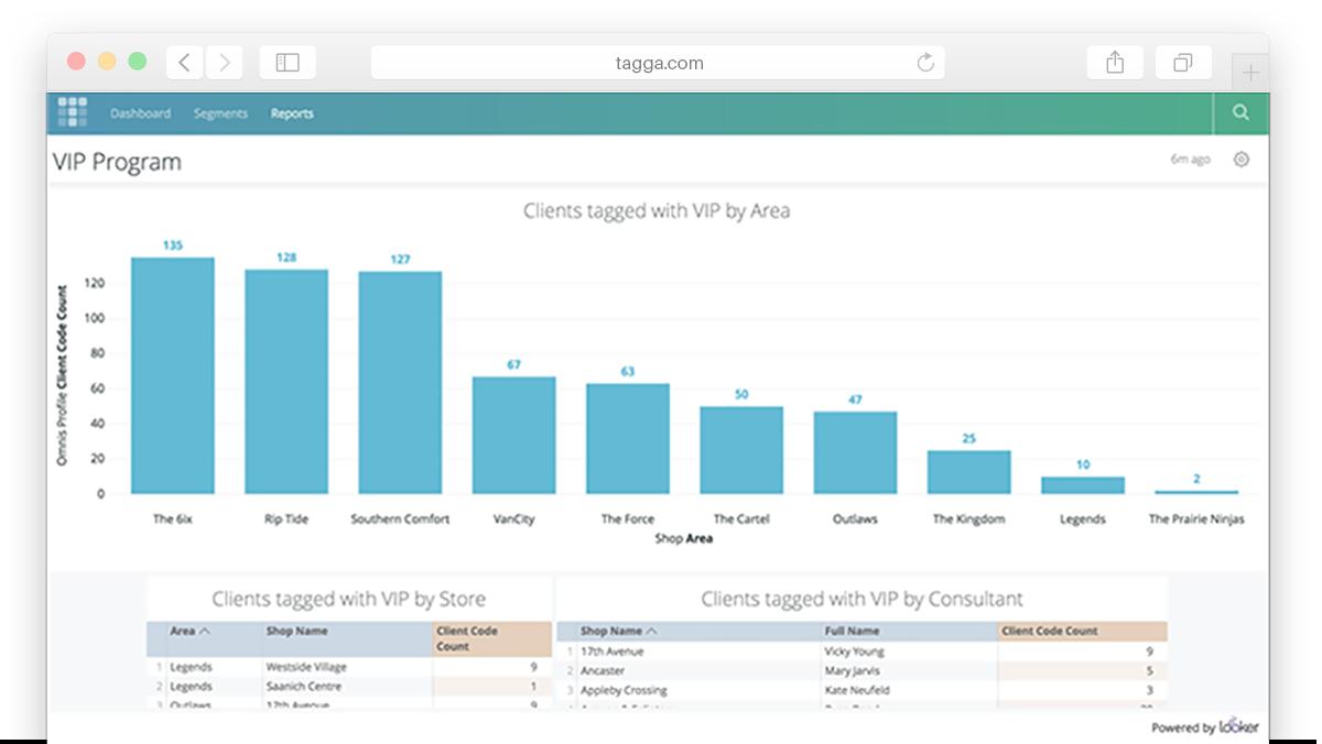 Tagga-looker-Reports