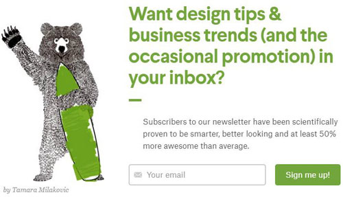 ecommerce email opt-in bear subscribe
